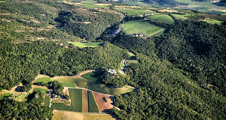 arial view of vineyards and rolling hills